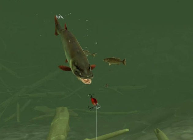 Juego Android Rapala Fishing - Daily Catch